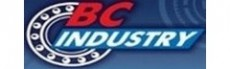 ТОО «BC Industry»
